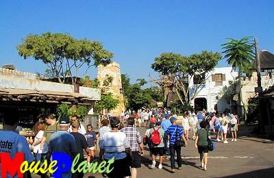 Disney world 12 jours de rêves en image Harambe