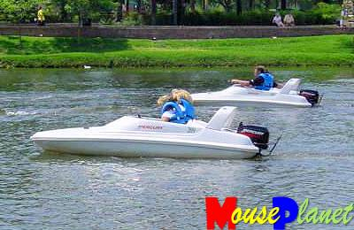 Water mice are available for rental at many of the marinas around WDW