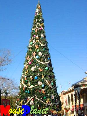 The Magic Kingdom's Christmas Tree