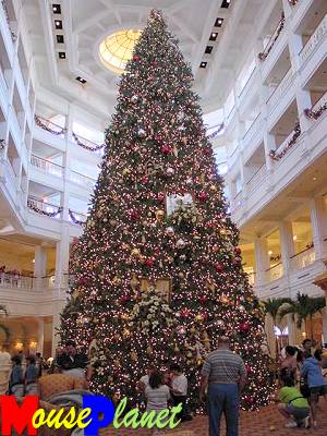 The spectacular Christmas tree at the Grand Floridian last year