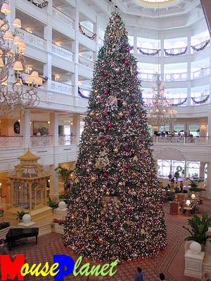 This year's tree at the Grand Floridian