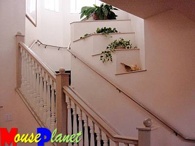 Staircase to the upstairs bedrooms.