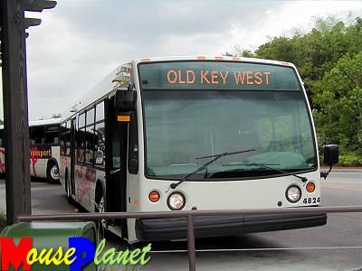Disney world 12 jours de rêves en image New_bus_front